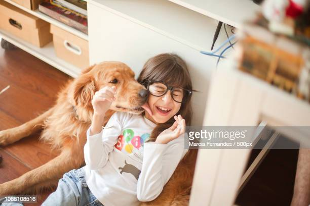golden retriever licking girl's face - licking stock pictures, royalty-free photos & images