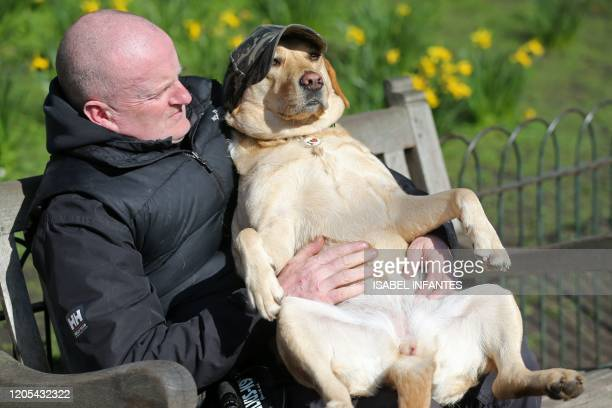Golden retriever named Lottie, enjoys some early spring sunshine with her owner in St James's Park in London on March 6 as the weather briefly...