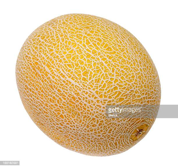 Golden Ripe Cantaloupe Isolated on White