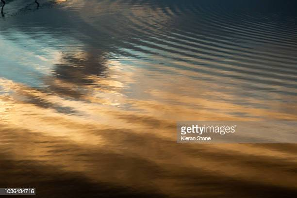 golden ripples in the water - lago reflection foto e immagini stock