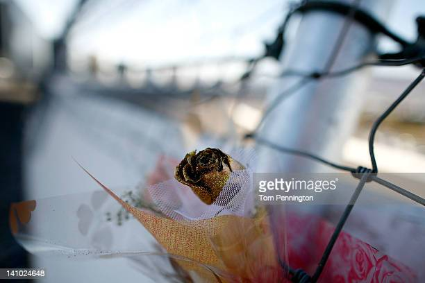 A golden rose is placed on the catch fence support pole that was replaced after the death of IZOD IndyCar driver Dan Wheldon at Las Vegas Motor...
