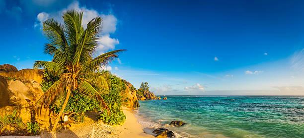 Golden Sand Beach Swaying Palm Trees Over Blue Ocean Lagoon Wall Art