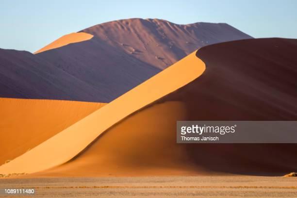golden sand dune in the sossusvlei region, namib desert, namib-naukluft national park, namibia - ナミブ砂漠 ストックフォトと画像