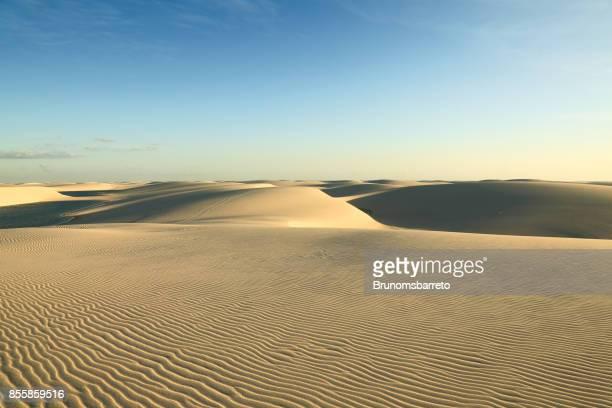dunes de sable doré