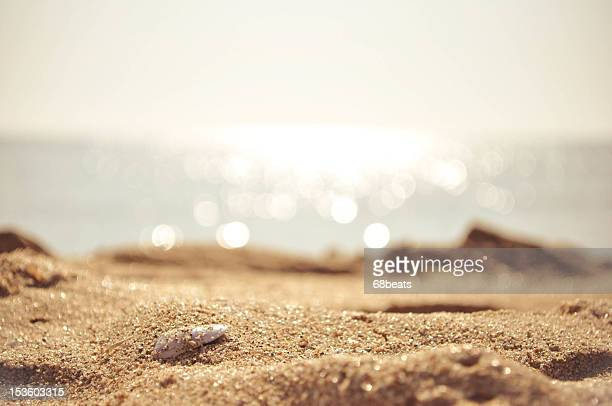 golden sand with the sea on the background - 砂 ストックフォトと画像