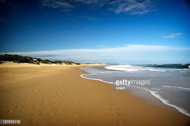 golden sandy beach - eastern cape stock pictures, royalty-free photos & images