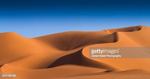 golden silky sahara sand dunes - アルジェリア ストックフォトと画像