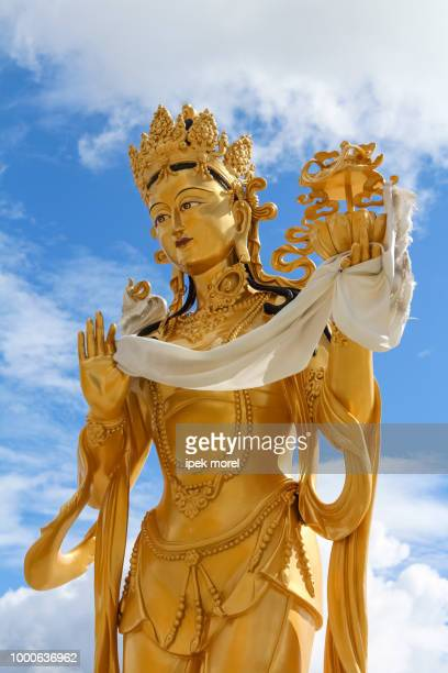 golden statue of buddhist goddess - ipek morel stock pictures, royalty-free photos & images