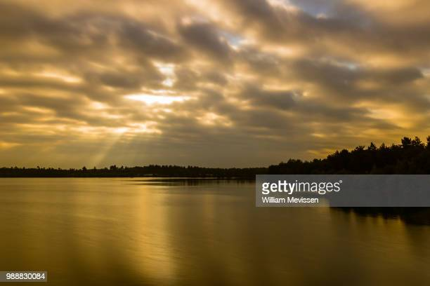 golden sunbreak - william mevissen stock pictures, royalty-free photos & images