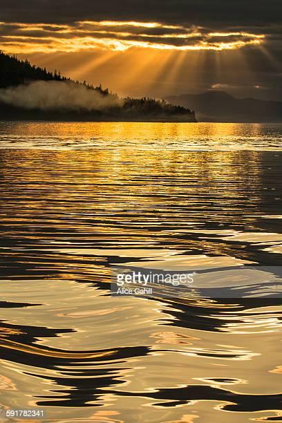 Golden sunrays over a golden ocean foreground