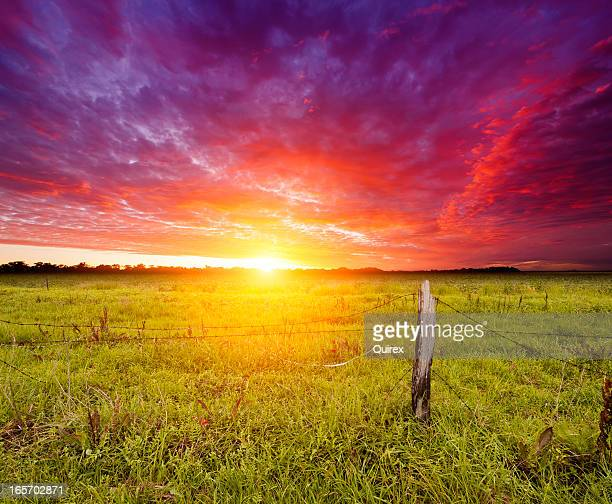 Golden Sunrise over farmland