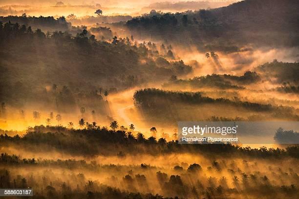 golden sunrise - provincia di songkhla foto e immagini stock