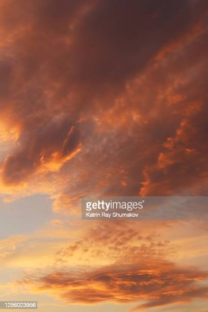 golden sunset clouds - creative brief 'nature' - toronto stock pictures, royalty-free photos & images