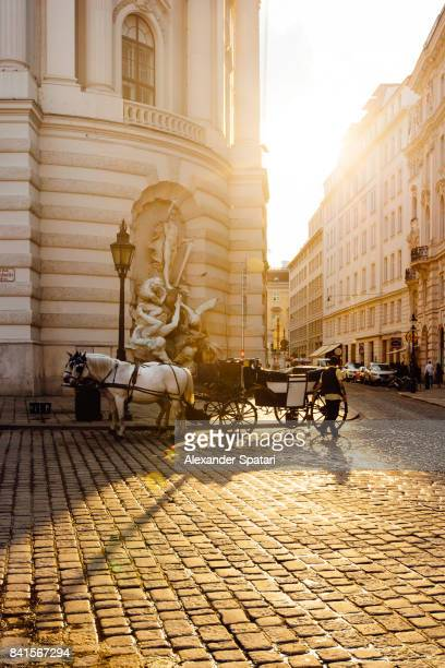 golden sunset in vienna, austria - vienna austria stock pictures, royalty-free photos & images
