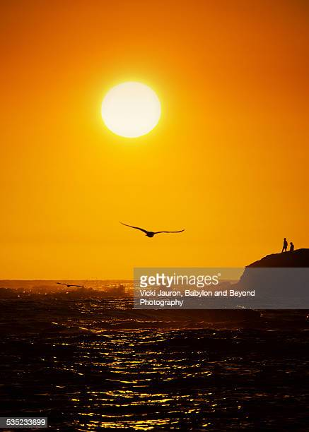Golden Sunset Silhouette - People, Waves, Gulls