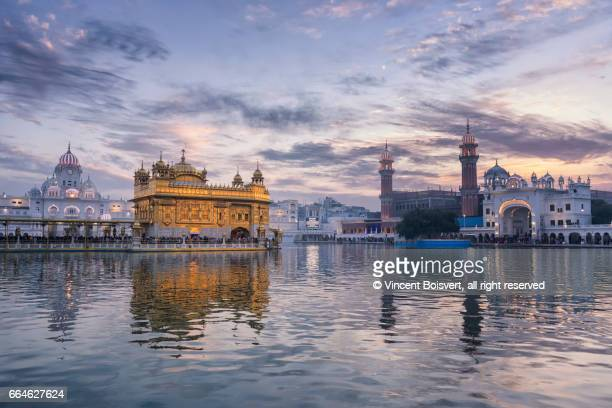 golden temple at dusk, amritsar, india - amritsar stock pictures, royalty-free photos & images
