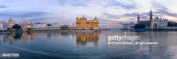 golden temple at dusk, amritsar, india - golden temple india stock photos and pictures