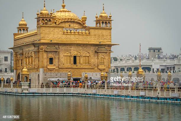 golden temple - harmandir sahib,india - amritsar stock pictures, royalty-free photos & images