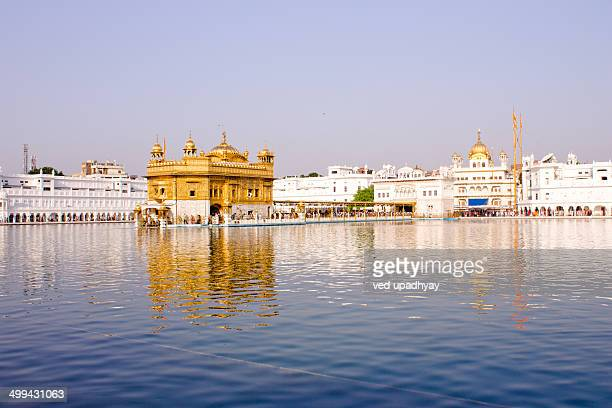 golden temple - golden temple india stock photos and pictures
