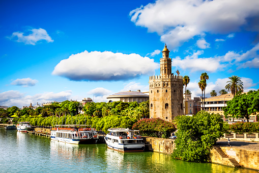 Golden tower (Torre del Oro) in Seville, Spain. 532854259