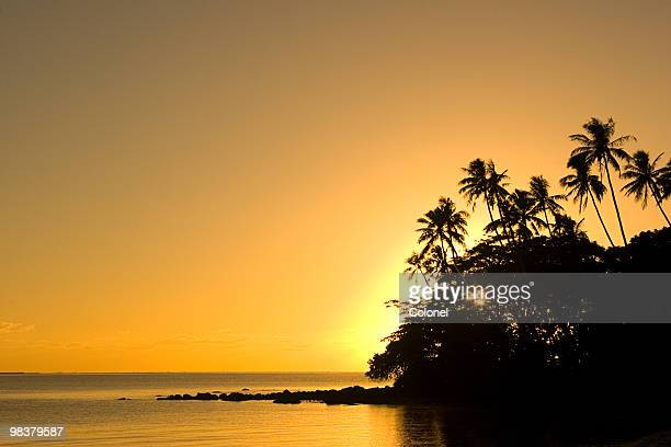 golden tropics - apia stock photos and pictures