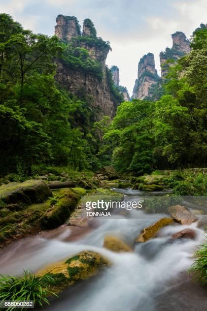 Golden Whip Stream, Zhangjiajie, Hunan, China