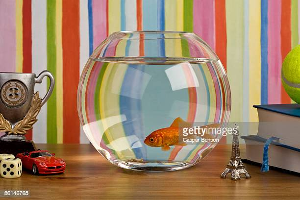 A goldfish in a fishbowl on a table with various knick knacks