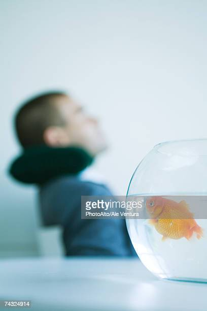 Goldfish in fishbowl, businessman resting in background