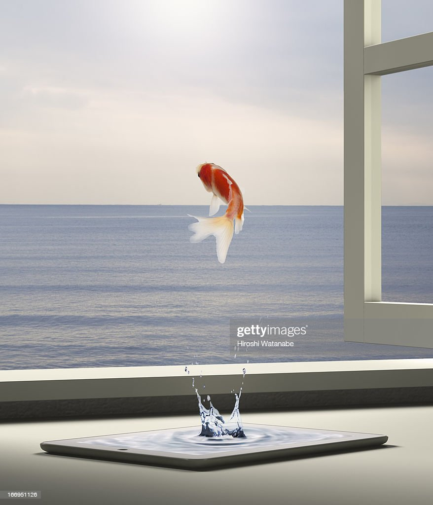 Goldfish is escaping to sea from tablet PC : Stock Photo