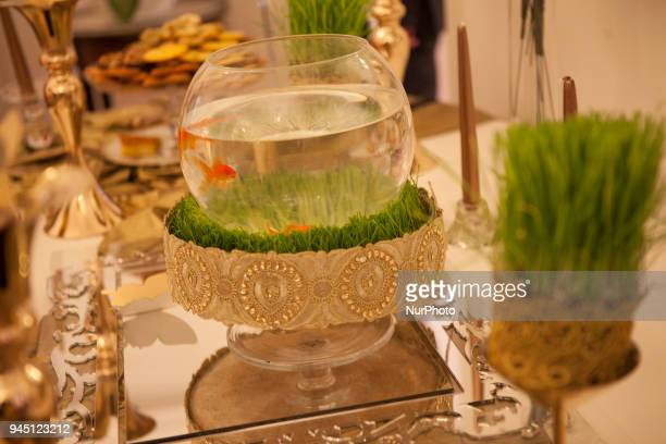A Goldfish on Wednesday 11 April 2018 at the Questure of the French National Assembly in Paris France during a ceremony was held to celebrate the...