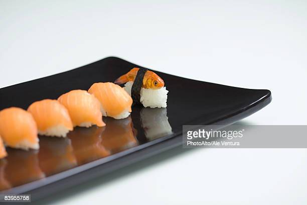Goldfish prepared as nigiri sushi, placed with row of salmon nigiri sushi