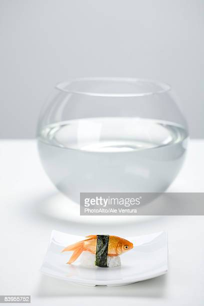 Goldfish prepared as sushi, placed on sushi plate in front of empty fishbowl