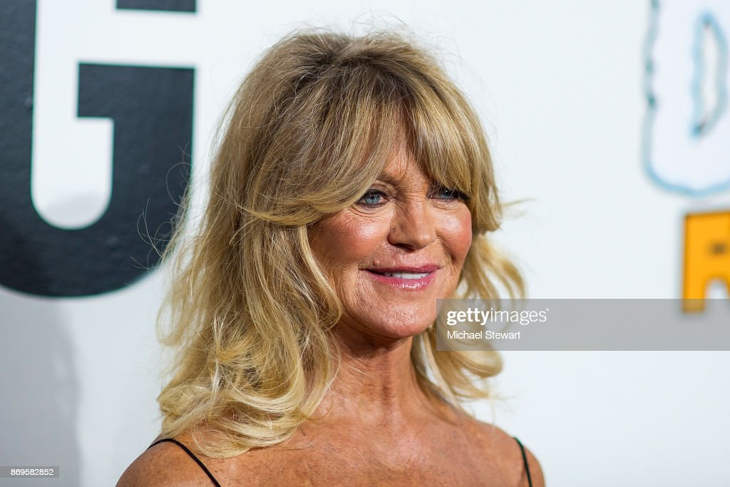 Goldie Hawn attends the 2017 Samsung Charity Gala at Skylight Clarkson Sq on November 2, 2017 in New York City.