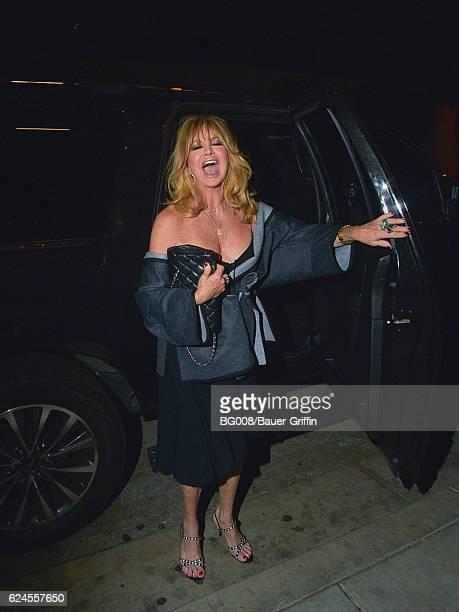 Goldie Hawn is seen on November 19 2016 in Los Angeles California
