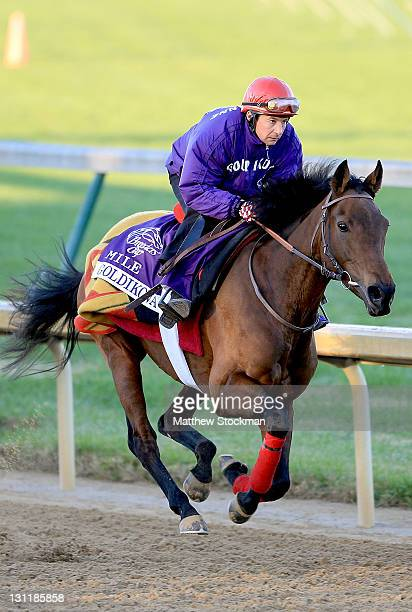 Goldikova trained by Freddy Head on the track during the morning exercise session in preparation for the Breeders' Cup at Churchill Downs on November...
