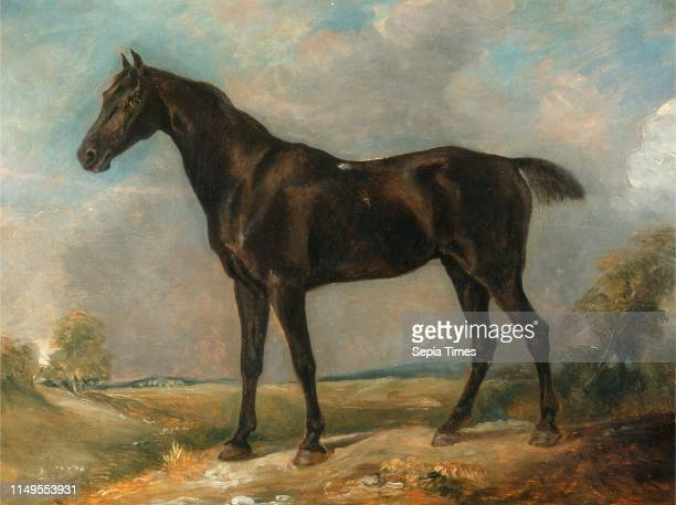 Golding Constable's Black Riding-Horse, Attributed to John Constable, 1776-1837, British