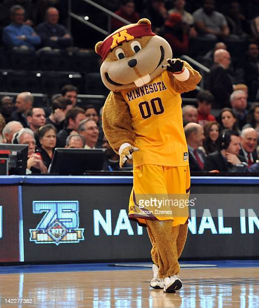 Goldy the mascot of the Minnesota Golden Golphers walks on the court during a time out with the Stanford Cardinal in the first half during the NIT...