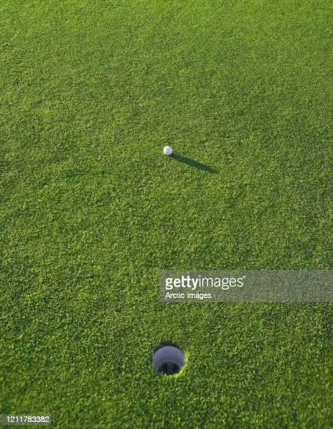 golf ball close to the hole - パッティンググリーン ストックフォトと画像