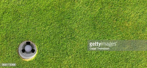 golf ball in hole banner photo - putting green stock pictures, royalty-free photos & images