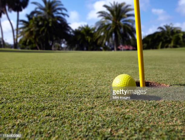 golf ball lying next to the hole - bradenton stock pictures, royalty-free photos & images