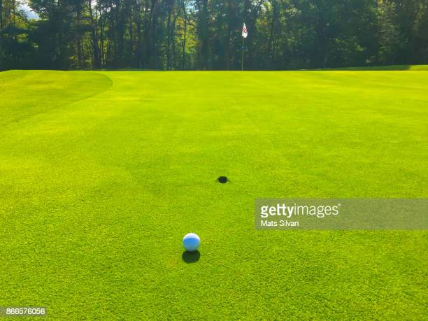 Golf Ball Lying on the Green with a Divot Faraway From the Golf Hole