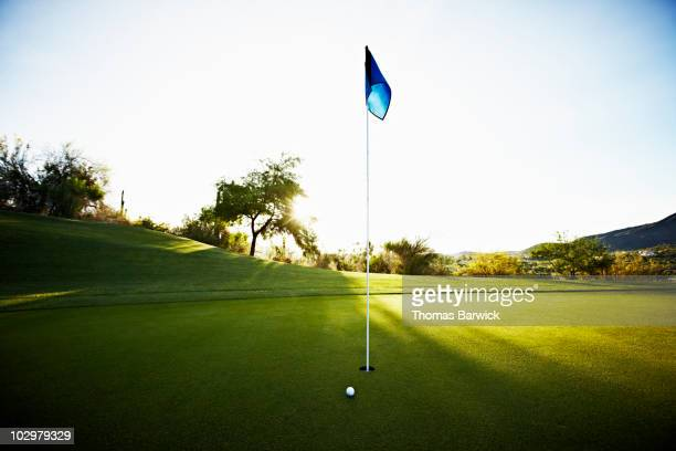 Golf ball next to flag on putting green