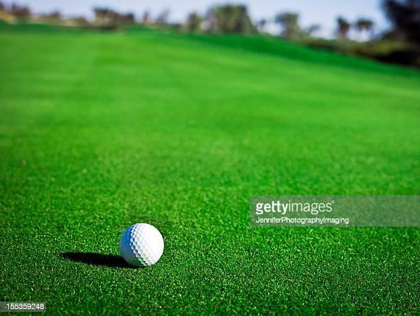 Golf Ball on a Green XXXL