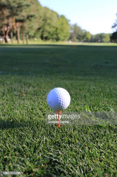 golf ball on a tee - golf background stock photos and pictures