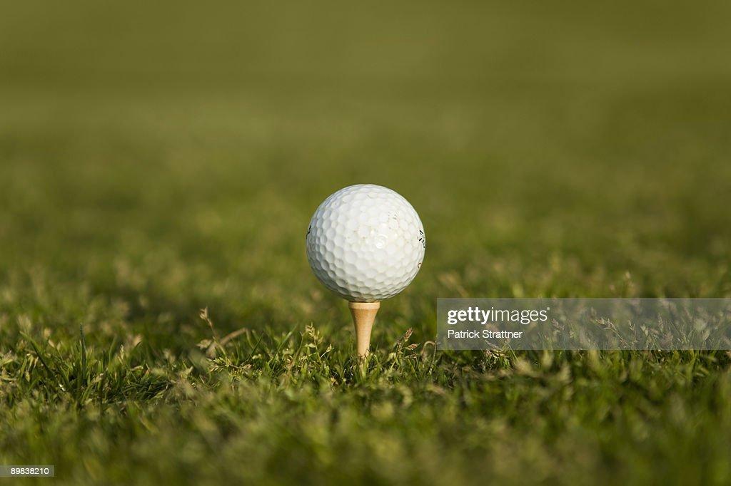 Golf ball on a tee : Foto de stock