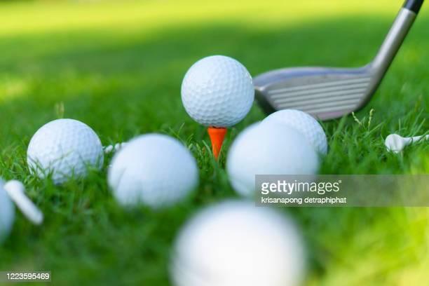 golf ball on green grass field. sport golf club - golftee stock-fotos und bilder