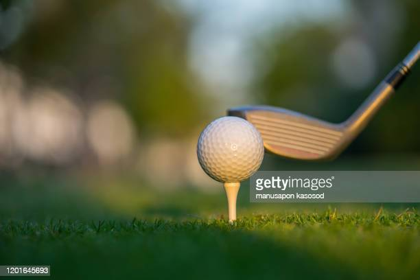 golf ball on green grass ready to be struck on golf course background - putting stock pictures, royalty-free photos & images