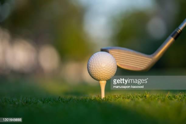 golf ball on green grass ready to be struck on golf course background - golftee stock-fotos und bilder