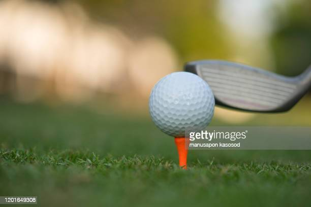 golf ball on green grass ready to be struck on golf course background - golf tournament stock pictures, royalty-free photos & images