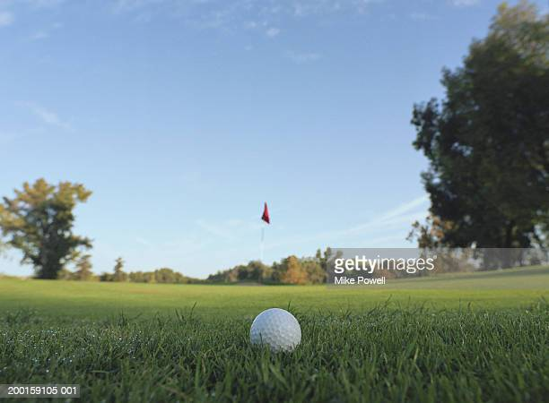 golf ball on green - putting green stock pictures, royalty-free photos & images